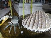 2012年台灣歷吏博物館(台南):DSC01507.JPG