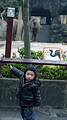 2011年台北木柵動物園:DSC03904.JPG