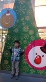 2013年秋紅谷泰迪熊展:DSC06395.JPG