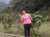 103年八仙山森林國家公園&谷關:DSC08327.JPG