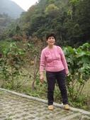 103年八仙山森林國家公園&谷關:DSC08329.JPG
