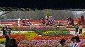 中社花園和大湖草莓節:DSC01115.jpg