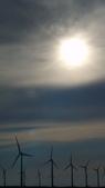 2011年清水高美溼地:DSC05197.JPG