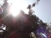 103年卓蘭VilaVilla魔法莊園:DSC08198.JPG