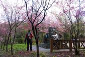 2012武陵農場賞櫻:1837845736.jpg