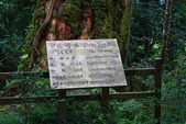 馬告生態公園.明池森林遊樂區:1807562968.jpg