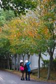 201301清大賞梅賞楓:1740066736.jpg