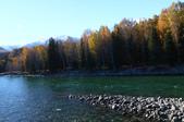 北疆金秋(3)喀納斯湖、禾木村:IMG_4001.JPG