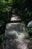 2012共桐賞花:大山背客家人文生態館:1273974721.jpg
