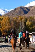 北疆金秋(3)喀納斯湖、禾木村:IMG_3995.JPG
