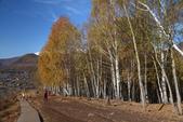 北疆金秋(3)喀納斯湖、禾木村:IMG_4902.JPG