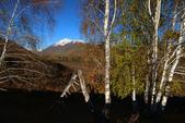 北疆金秋(3)喀納斯湖、禾木村:IMG_4206.JPG