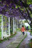 2013紫藤咖啡園:1744197449.jpg