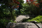 2012共桐賞花:大山背客家人文生態館:1273989590.jpg