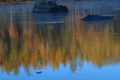 北疆金秋(3)喀納斯湖、禾木村:IMG_3803.JPG