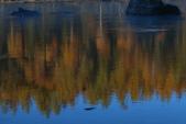 北疆金秋(3)喀納斯湖、禾木村:IMG_3805.JPG