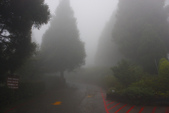 101同學會~迷霧中的雪霸農場(新竹五峰):1357338509.jpg
