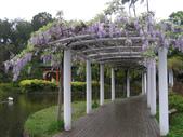 2013紫藤咖啡園:1744203250.jpg