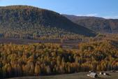 北疆金秋(3)喀納斯湖、禾木村:IMG_4887.JPG
