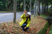 201301清大賞梅賞楓:1740066754.jpg