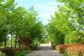 (3)杭州~萬松書院、西湖、南宋官窯、西溪溼地:S 1114.JPG