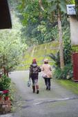 2012龍年風景(茶花山櫻花):1118849116.jpg