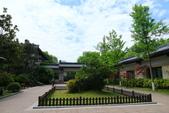 (3)杭州~萬松書院、西湖、南宋官窯、西溪溼地:S 979.JPG