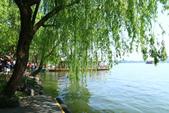 (3)杭州~萬松書院、西湖、南宋官窯、西溪溼地:S 816.JPG