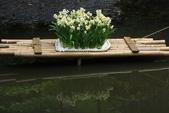 走春~陽明山、竹子湖、硫磺谷:V 100.JPG
