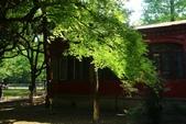 (2)蘇州大學、留園、胡雪巖故居、印象西湖0425:S 337.JPG
