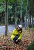 201301清大賞梅賞楓:1740066755.jpg