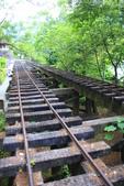 2013暑假---林田山林業文化園區&沿途美景:_MG_4339.JPG