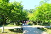(3)杭州~萬松書院、西湖、南宋官窯、西溪溼地:S 754.JPG