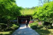 (3)杭州~萬松書院、西湖、南宋官窯、西溪溼地:S 761.JPG
