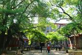 (2)蘇州大學、留園、胡雪巖故居、印象西湖0425:S 328.JPG
