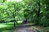 2014.04.27福山植物園&白米木屐:_MG_1374.JPG