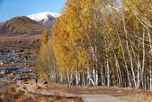 北疆金秋(3)喀納斯湖、禾木村:IMG_4957.JPG