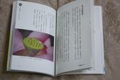我的第一本書:1829226458.jpg