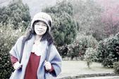 2013陽明山~迷霧朦朧之美:1308565202.jpg