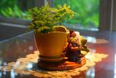 尖石紅薔薇景觀花園餐廳:1278325563.jpg