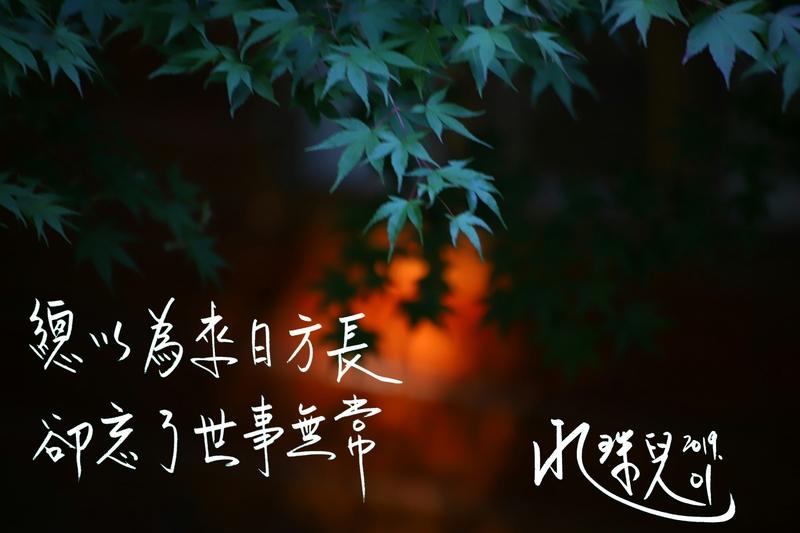 綜合篇:PicsArt_01-21-03.52.17.jpg