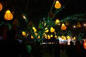 2012台灣燈會在鹿港:1086473851.jpg