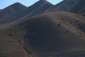 北疆金秋(4)魔鬼城、獨山子、烏魯木齊:IMG_5759.JPG