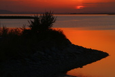 北疆金秋(3)喀納斯湖、禾木村:IMG_5206.JPG