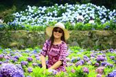 2013與繡球花的美麗約會:1235902665.jpg