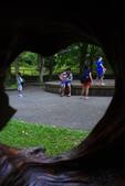 2013暑假---林田山林業文化園區&沿途美景:_MG_4434.JPG