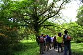 2014.04.27福山植物園&白米木屐:_MG_1345.JPG