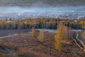 北疆金秋(3)喀納斯湖、禾木村:IMG_4555.JPG