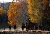 北疆金秋(3)喀納斯湖、禾木村:IMG_4084.JPG