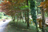 馬告生態公園.明池森林遊樂區:1807557014.jpg
